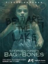 Bag of Bones (2011)
