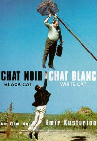 Pisica albă, pisica neagră